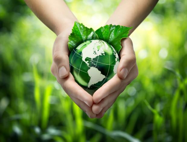 sustainability2-620x471